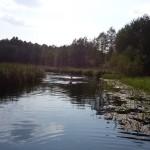 spływ nurkowy dzieci rzeką