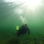 słońce pod wodą