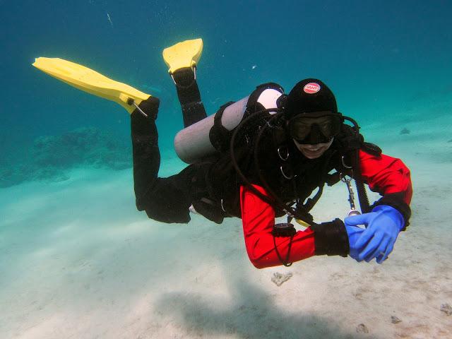 nurkowanie w Egipcie