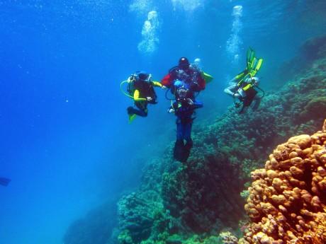 nurkowanie dzieci w Egipcie