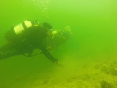 nurkowie pod wodą